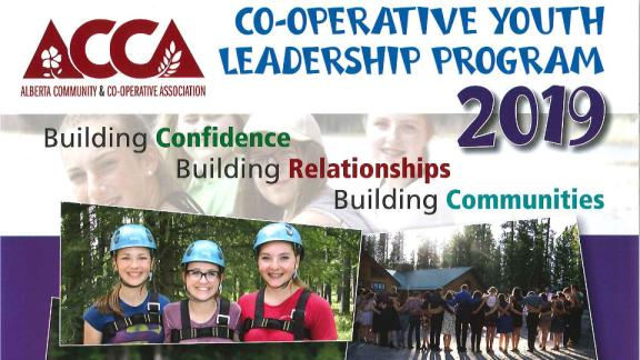 Co-op Camp 2019
